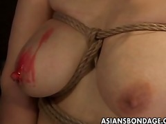 breasty japanese honey in sexy wax sadomasochism