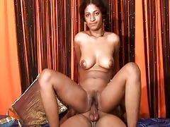 indian doxy bounces around on a large hard weenie