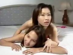 penglai seazan - asian flower - 4