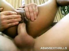 diminutive oriental rides a knob
